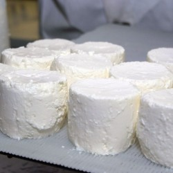 Camel White Cheese - 250g