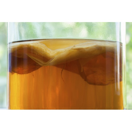 Jun Tea with SCOBY - 720mL