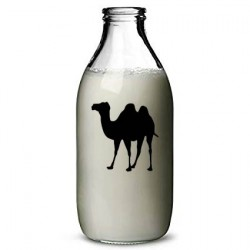 Fresh Pasteurized Camel Milk - 0.9L