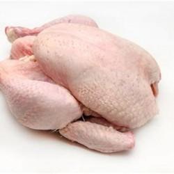 White Organic Chicken - 1.2 - 1.5 kg